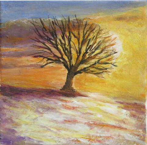 arbre soleilcouchant en hiver