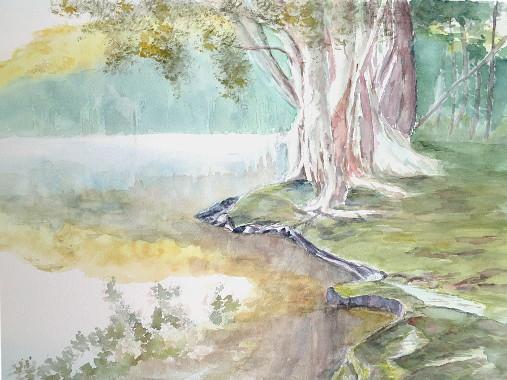 lac avec brume arbre et reflet