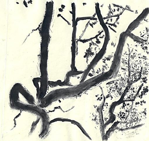 Branchew