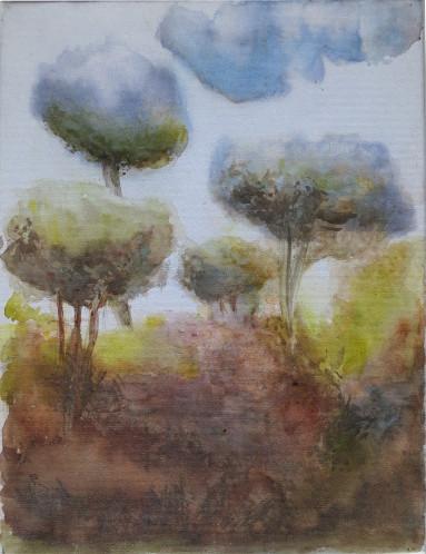 aquarelle sur toile