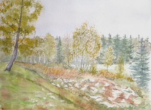 paysage de tourbière à l'automne
